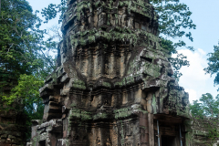 Siem Reap - Ta Prohm Temple